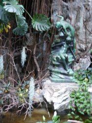 Surpris au bain – Jardin zoologique – Antwerpen (Anvers)