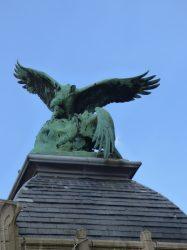 Deux vautours  – Jardin zoologique – Antwerpen (Anvers)