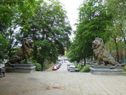 Les Lions Totor et Tutur – Charleroi