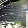 Pleureuse - Tombe famille Spelten-Marien - cimetière - Woluwe-Saint-Pierre - Image7
