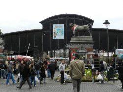 Taureaux – Les Abattoirs – Anderlecht