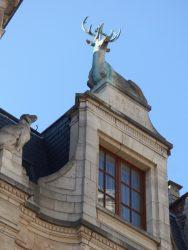 Cerf – Brusselsestraat – Leuven (Louvain)