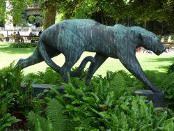 Léopard marchant – Jardin zoologique – Antwerpen (Anvers)