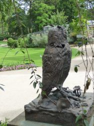 Grand-duc de Verreaux  – Jardin zoologique – Antwerpen (Anvers)