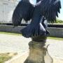Aigle impérial (2) - Mémorial 1815 - Braine-l'Alleud - Image1