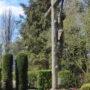 Christ en croix - cimetière de Forest à Alsemberg - Image3