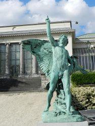 Le Laurier ou la gloire – Jardin botanique – Saint-Josse-ten-Noode