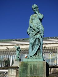 Le Souci – Jardin botanique – Saint-Josse-ten-Noode