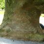 Buste de Jean Varin - Parc de La Boverie - Liège - Image3
