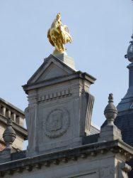 Coq – Hôtel de ville – Saint-Gilles