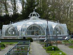 "Serre "" Balat "" – Jardin Botanique – Meise"